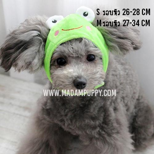 หมวกสุนัขแฟนซี ลายกบ สีเขียว พร้อมส่ง