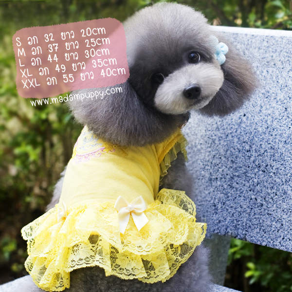 ชุดกระโปรงสุนัข Sweet Yellow พร้อมส่ง