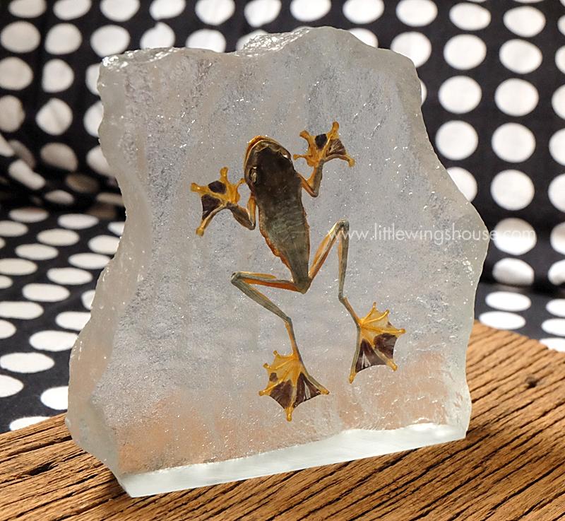 ++ ที่ทับกระดาษ กบบิน (Flying Frog) ทรงเลียนแบบก้อนหิน ++