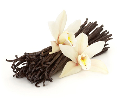VN กลิ่นวานิลา Vanilla Flavor