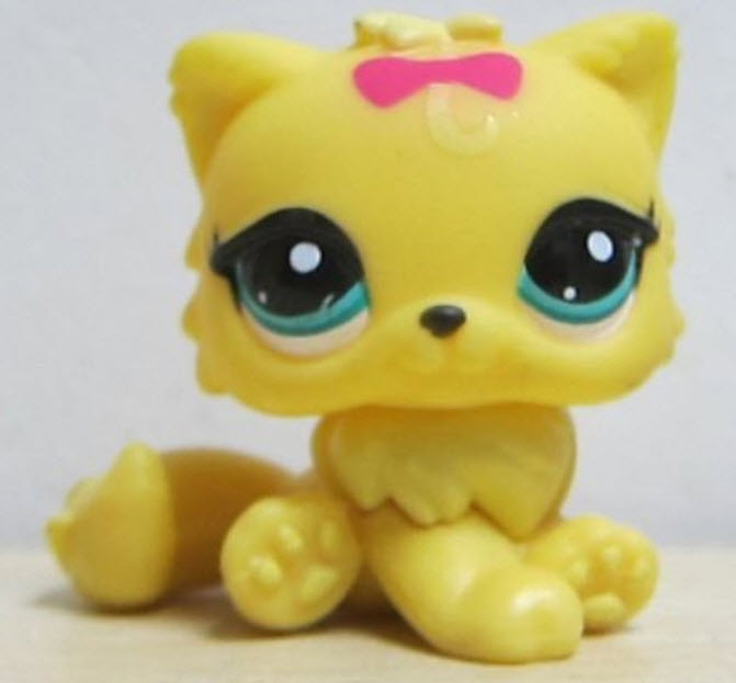 แมวเปอเซียสีเหลือง โบสีชมพู #778 (หายาก)