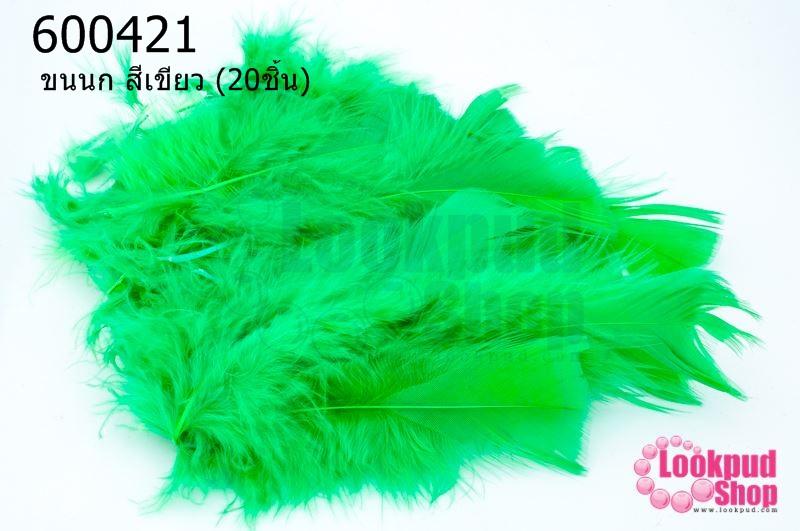 ขนนก สีเขียว (20ชิ้น)