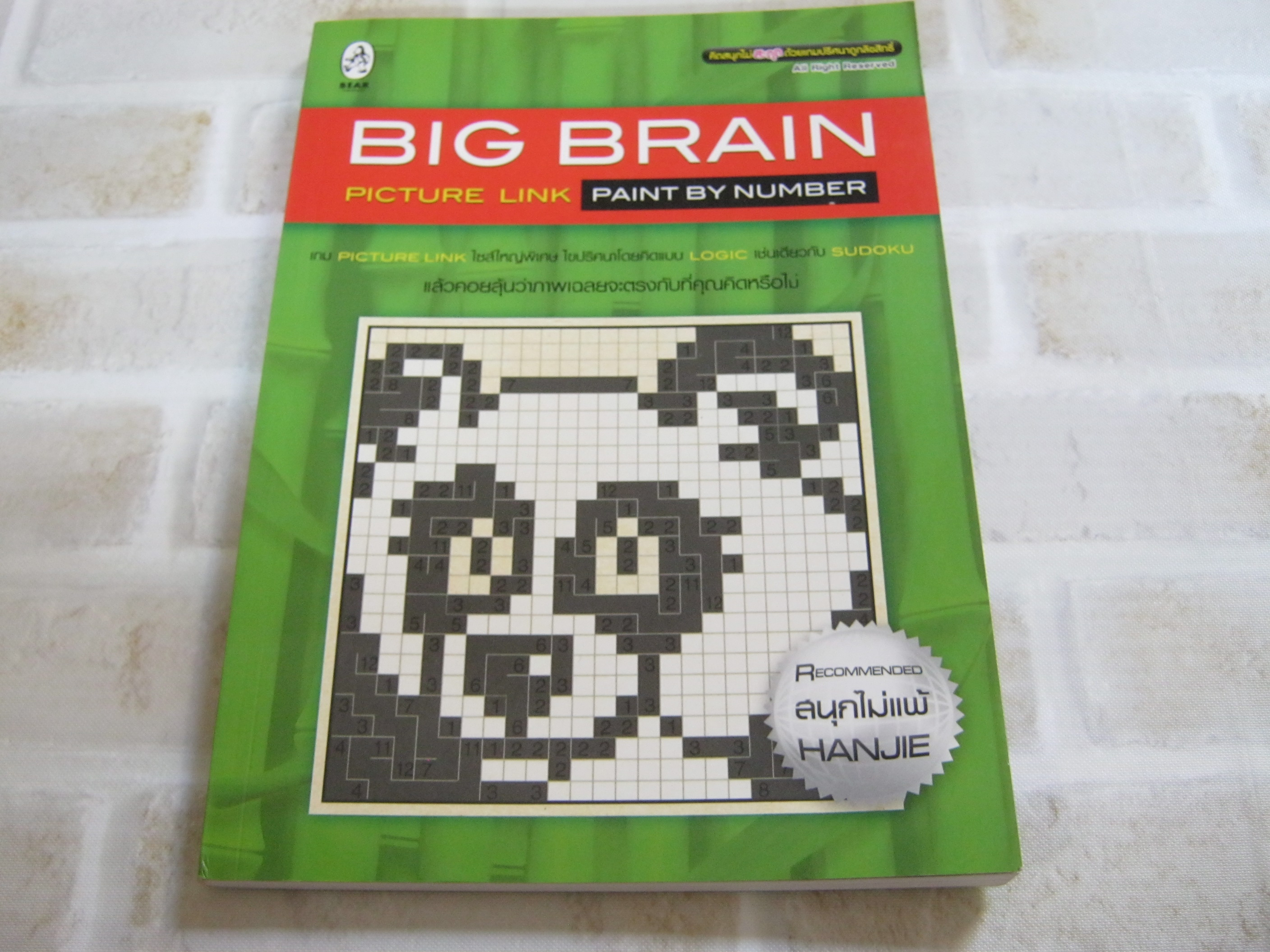 BIG BRAIN PICTURE LINK PAINT BY NUMBER