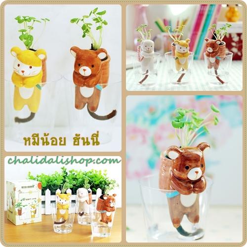 ตุ๊กตาหมี เซรามิค, ชุดปลุกต้นไม้ ไม่ต้องรดน้ำ, กิ๊ฟช็อป, สินค้าไอเดีย ของแต่งบ้าน, ของขวัญรูปตุ๊กตาหมี เซรามิค
